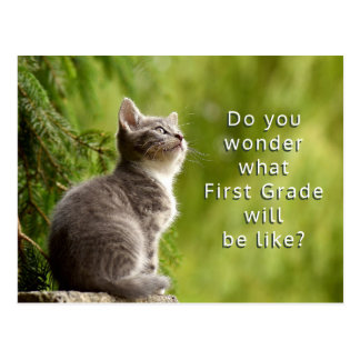 Cute Kitten Elementary Students Welcome Postcard