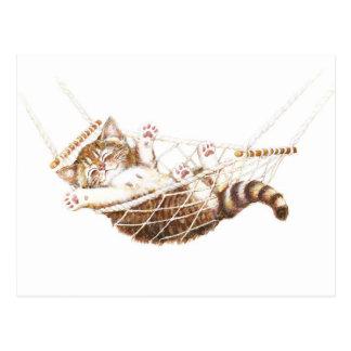 Cute kitten in hammock postcard