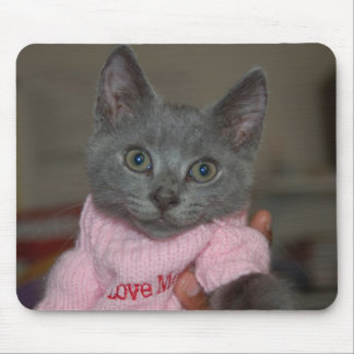 Cute Kitten in Sweater Mouse Pad