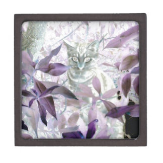 Cute Kitten in the bushes, purple abstract art Jewelry Box