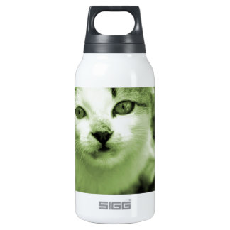 Cute kitten insulated water bottle
