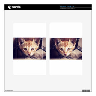 Cute Kitten looking at YOU Decals For Kindle Fire