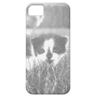 Cute Kitten Phone Case