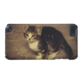 Cute Kitten Photograph, Baby Animal iPod Touch (5th Generation) Case