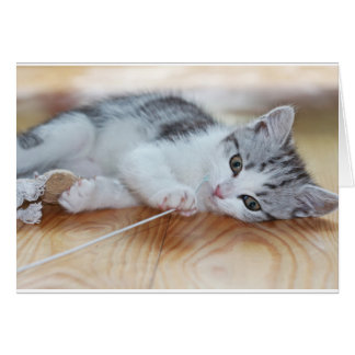 Cute Kitten playing with string Card