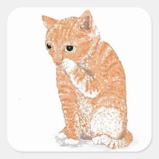 Cute Kitten  Products Sticker