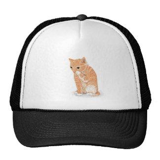 Cute Kitten  Products Trucker Hat