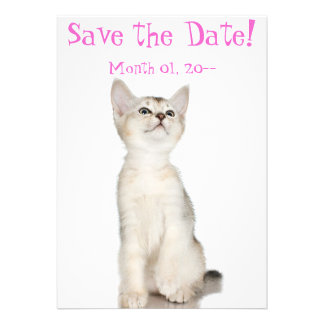 Cute Kitten Save the Date Announcements