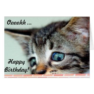 Cute Kitten says happy Birthday Card