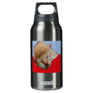 Cute Kitten Sleeping Insulated Water Bottle