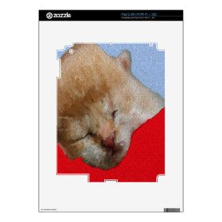 Cute Kitten Sleeping iPad 2 Skin