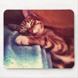 Cute kitten sleeping mouse pad