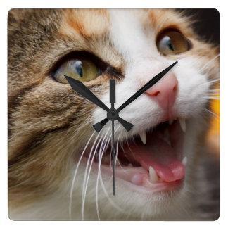 Cute Kitten Square Wall Clock