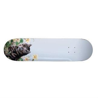 Cute kitten - vintage cat art skateboard decks