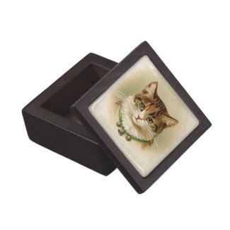 Cute kitten with bells on necklace - for cat lover premium gift boxes