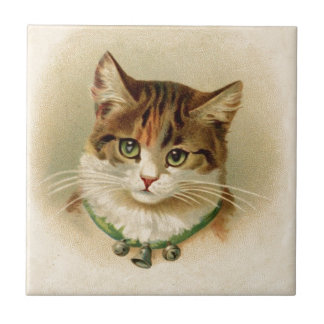 Cute kitten with bells on necklace - for cat lover tile