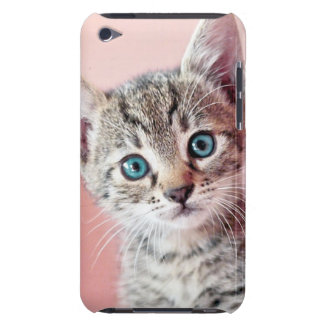 Cute kitten with blue eyes. barely there iPod covers