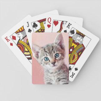 Cute kitten with blue eyes. card deck