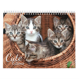 Cute Kittens 2018 Cat Pet Photo Calendar