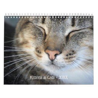 Cute Kittens and Cats 2020 Pet Photo Calendar