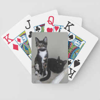 Cute Kittens Bicycle Playing Cards