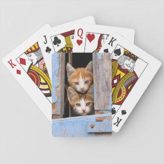 Cute Kittens in a Vintage Window, Playing Card Decks