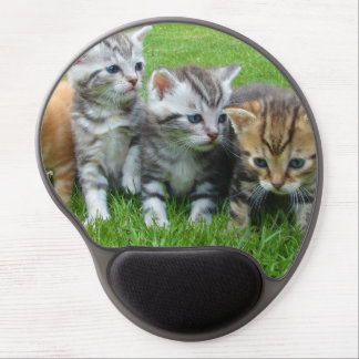 Cute kittens sitting in grass gel mouse pad