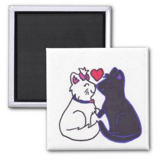 cute kittens/valentine's day kittens magnet