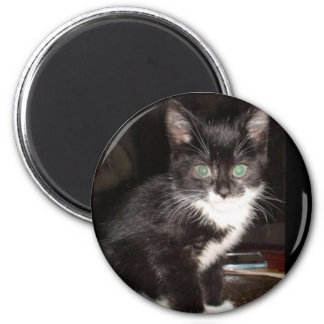 Cute Kitty 2 Inch Round Magnet