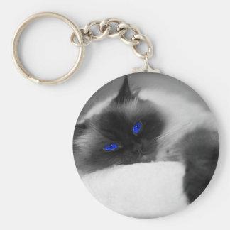 cute kitty basic round button keychain