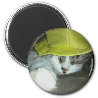 CUTE KITTY CAT 2 INCH ROUND MAGNET