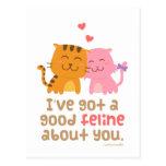 Cute Kitty Cat Feline Love Confession Pun Humor Postcard