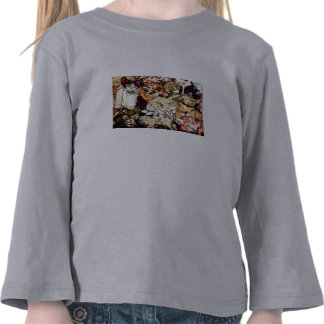 Cute Kitty Cat Tapestry Photo Image T Shirt