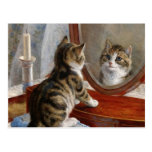 Cute Kitty Cat Vintage Painting by Frank Paton Post Cards