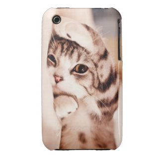 Cute Kitty iPhone 3 Cover