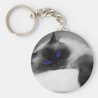 cute kitty key chain