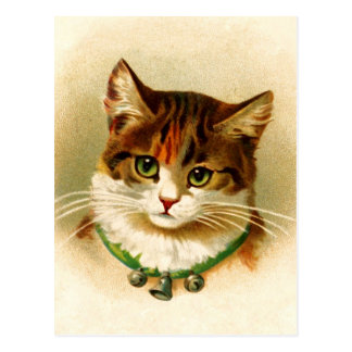 Cute kitty with bell collar postcard