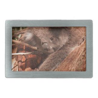 Cute Koala 1214 Belt Buckle
