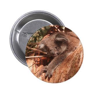 Cute Koala 1214 Pinback Button