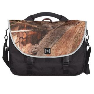 Cute Koala 1214 Laptop Computer Bag