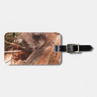 Cute Koala 1214 Travel Bag Tag