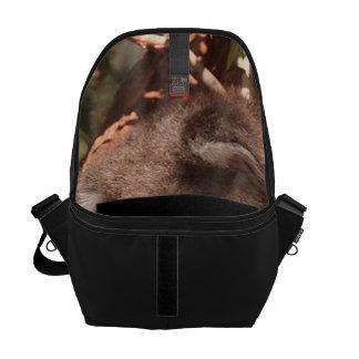 Cute koala 1214 messenger bag