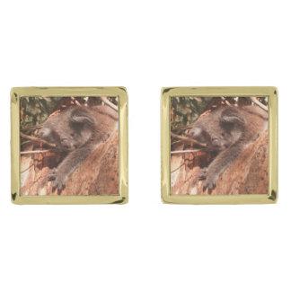Cute koala 1214 gold finish cuff links