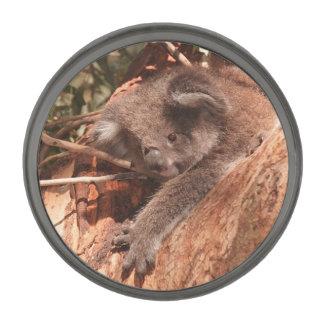 Cute koala 1214 gunmetal finish lapel pin