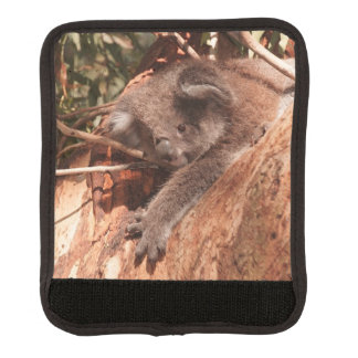 Cute koala 1214 handle wrap