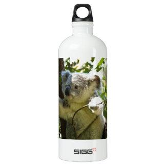 Cute Koala Aussi Outback Safari Zoo Park Colorful Aluminum Water Bottle