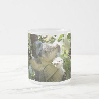 Cute Koala Aussi Outback Safari Zoo Park Colorful Frosted Glass Coffee Mug