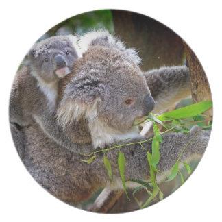 Cute Koala Bear Destiny Nature Aussi Outback Plates