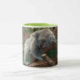 Cute Koala Bear Destiny Nature Aussi Outback Two-Tone Coffee Mug