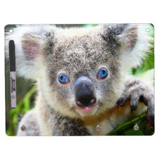 Cute Koala Bear Dry Erase Whiteboards